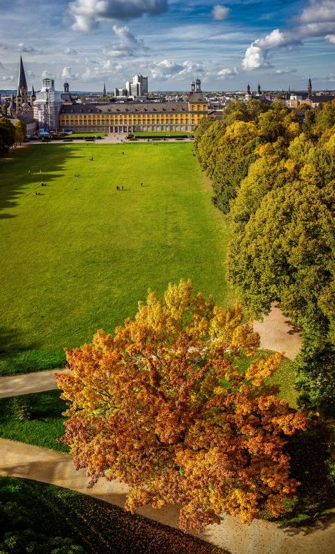 Herbstbaum und Schloss
