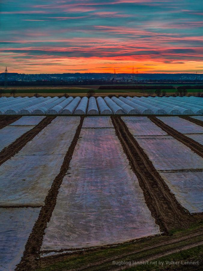 Sonnenuntergang ueber Feldern bei Sechtem