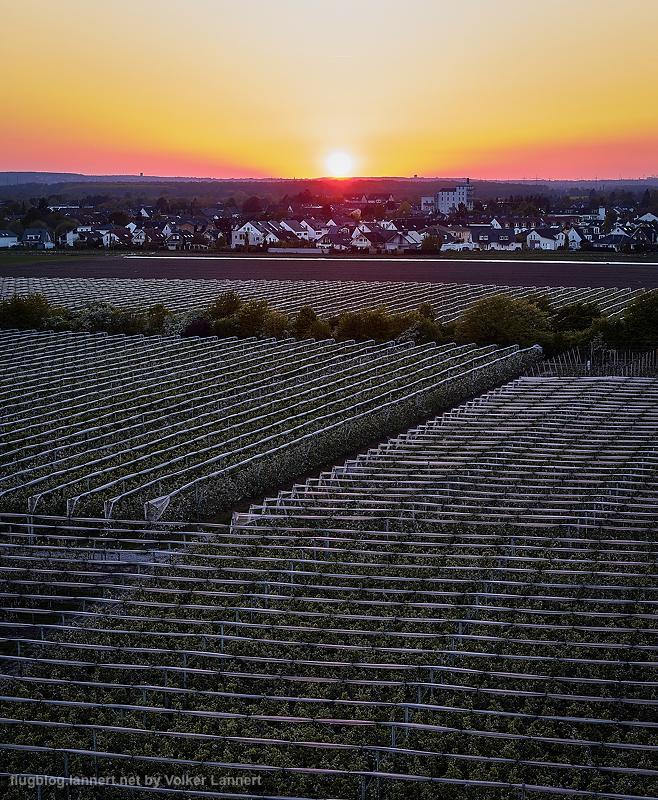 Sonnenuntergang bei Graurheindorf